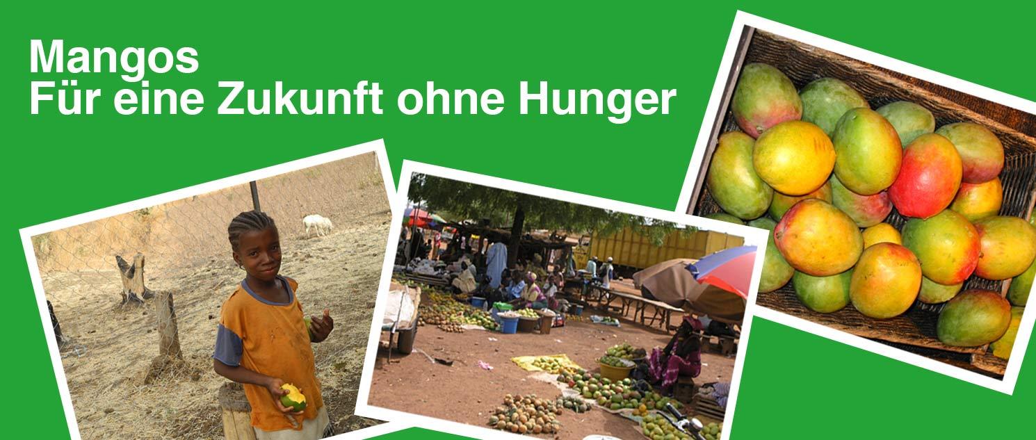 Mangos für eine Zukunft ohne Hunger