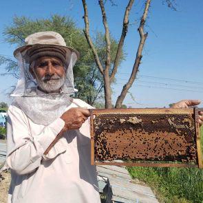 Bienenstock (Muttertag)