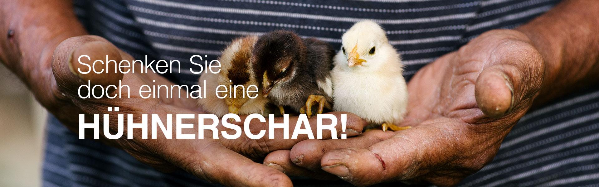 Schenken Sie doch mal eine Hühnerschar !